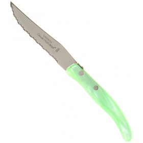 CLAUDE DOZORME STEAK KNIFE GREEN HANDLE 10.5 cm - 1.13.110.82